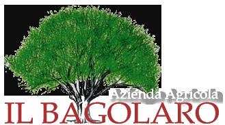 Cenone di Capodanno 2016 – Il Bagolaro